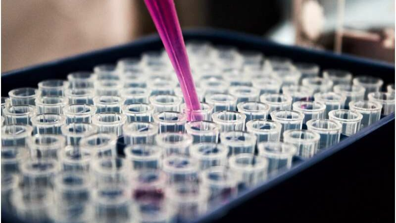 Genomic comparison of prostate cancer cells eradicated by and resistant to treatment